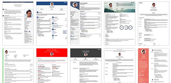 Examples of a Perfect CV